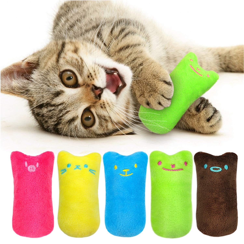 Catnip filled cartoon kittys!