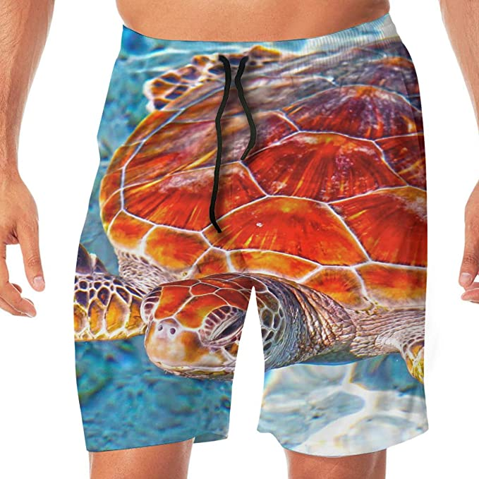 76ebb812aa Amazon.com: Quick Dry Men's Beach Shorts Sea Turtle Print Swim Trunks Surf  Board Pants Pockets: Clothing