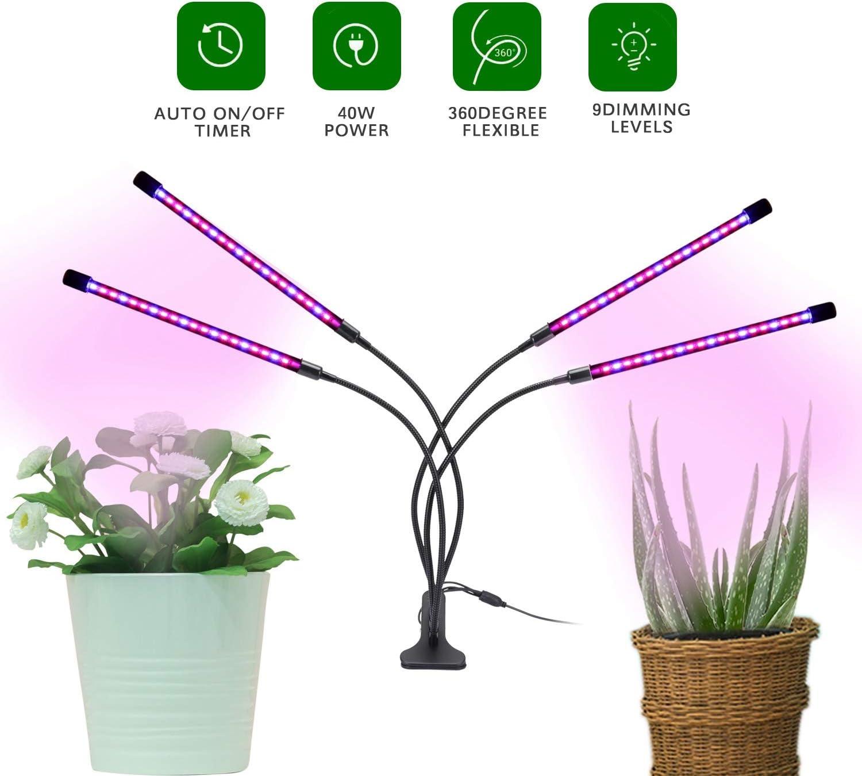 Lampe de Culture /à 360 Degr/éS R/éGlable Semis Plantes Succulentes pour Plantes DInt/éRieur Plante /à Spectre Complet /à Quatre Tubes Gaoominy Lampe /à LED