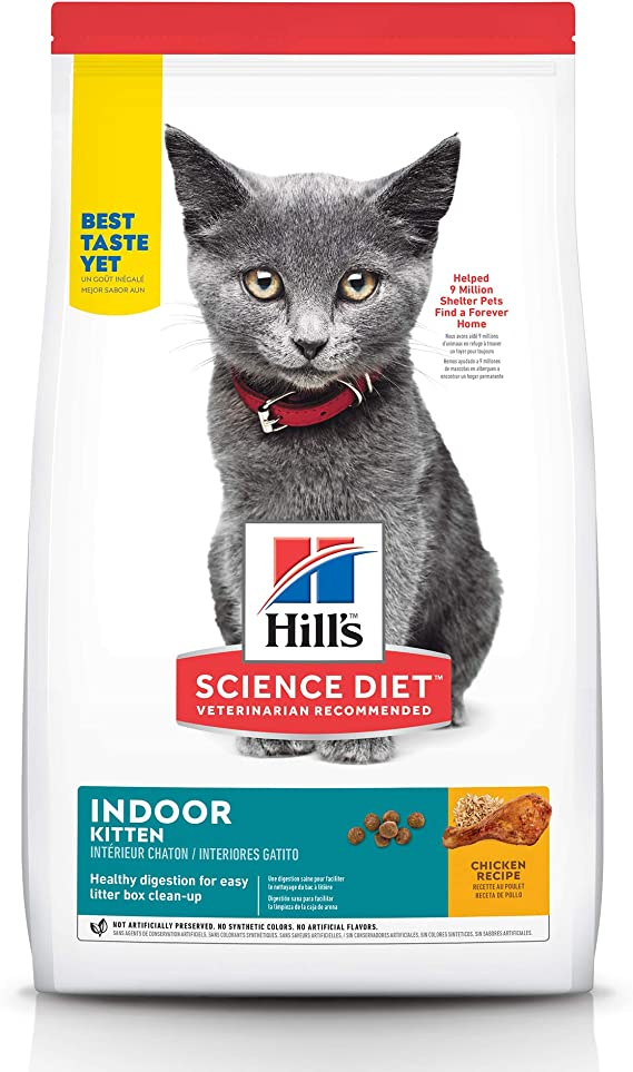 science diet cat food after kitte
