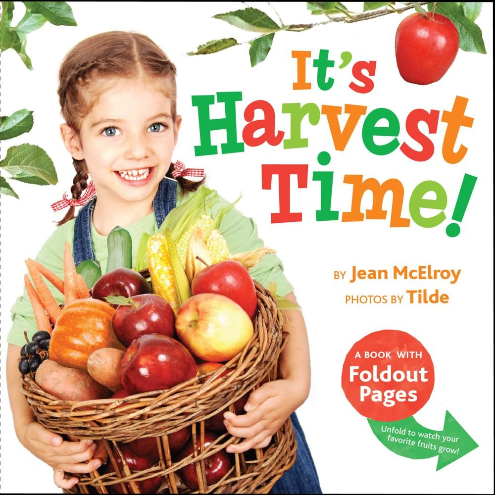 It's Harvest Time!: A Book with Foldout Pages