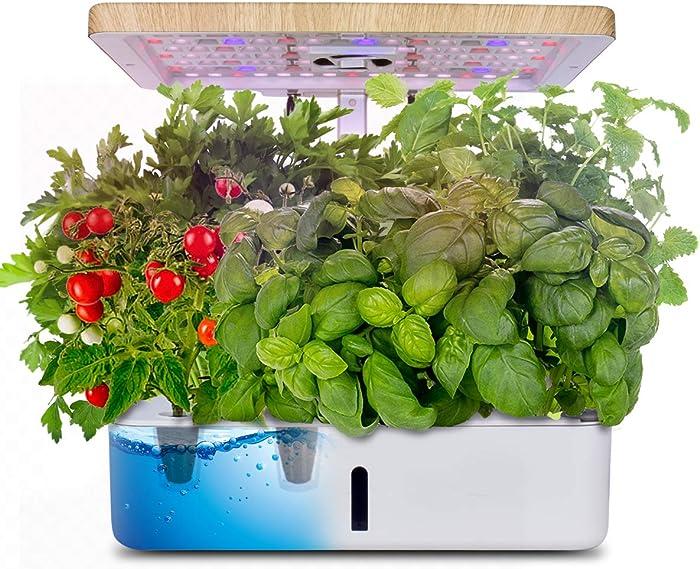 Top 10 Non Hydroponicindoor Food Growing