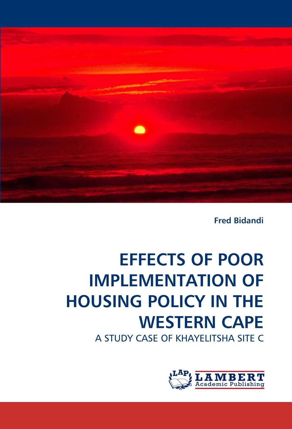EFFECTS OF POOR IMPLEMENTATION OF HOUSING POLICY IN THE WESTERN CAPE: A STUDY CASE OF KHAYELITSHA SITE C ebook