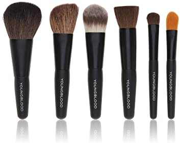 Amazon Com Youngblood Mineral Cosmetics Natural Mini Brush Kit