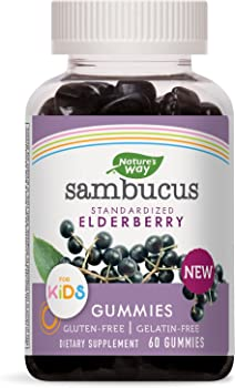 Nature's 60 Count Way Sambucus Elderberry Gummies for Kids