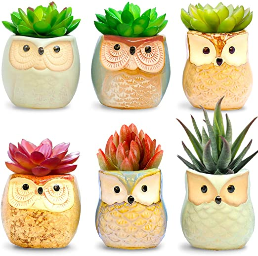 Set Of 6 Mini Faux Plants and Ceramic Pots Housewarming Ideas Amaze Owl Assorted Artificial Succulent Plants and Owl Planters Living Room Table Shelf Desk Decor Indoor Office Table Decorations
