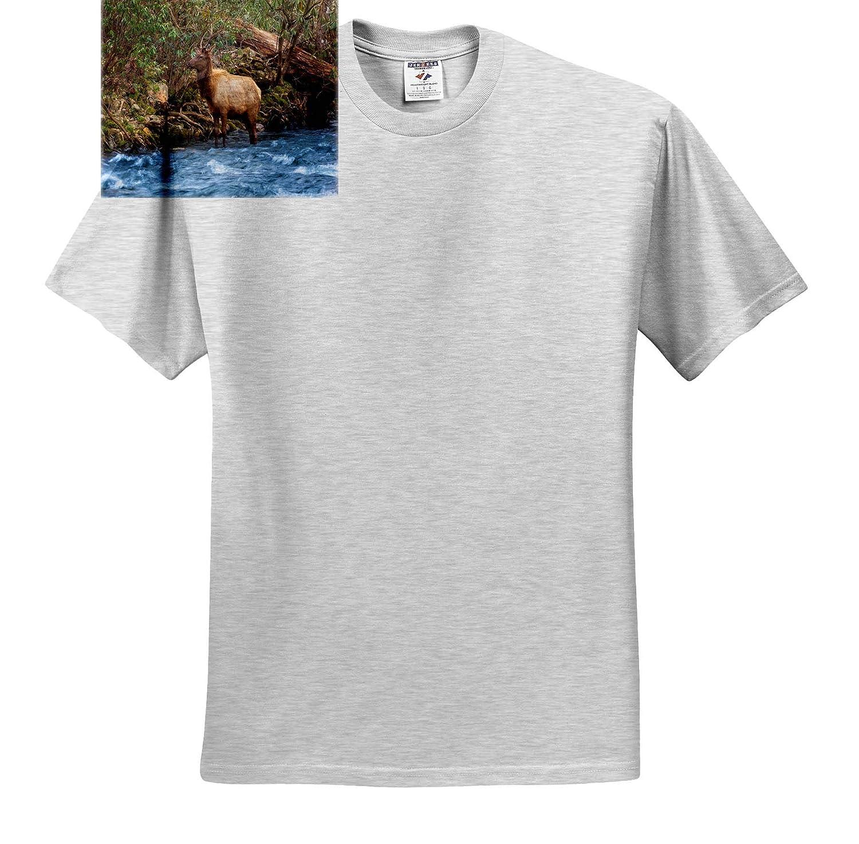 Wildlife T-Shirts 3dRose Mike Swindle Photography Elk Standing in Creek
