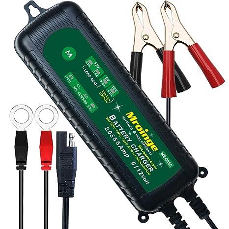 Amazon.com: Mroinge Cargador de batería inteligente de 6 V y ...