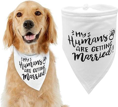 Here Comes the Grooms Dog Wedding Bandana