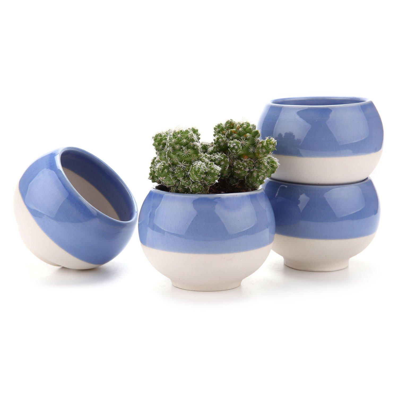 T4U 3 Inch Ball Shape Sucuulent Cactus Plant Pots Flower Pots Planters Containers Window Boxes Blue 1 Pack of 4