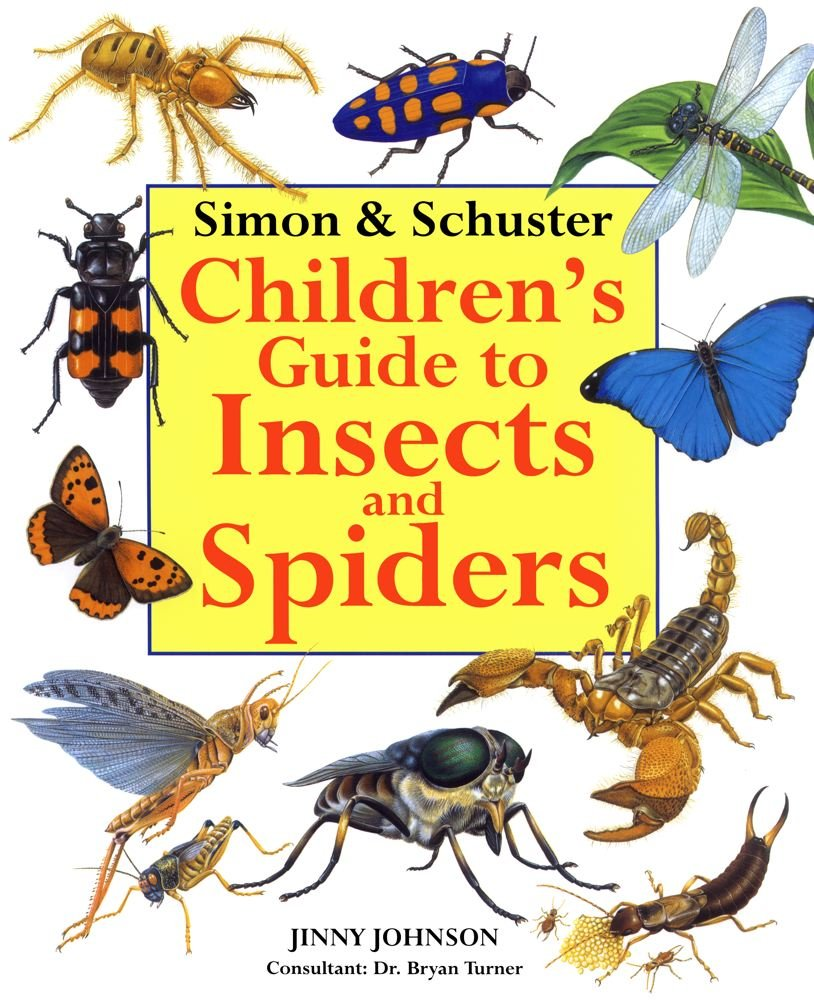 simon u0026 schuster children u0027s guide to insects and spiders jinny