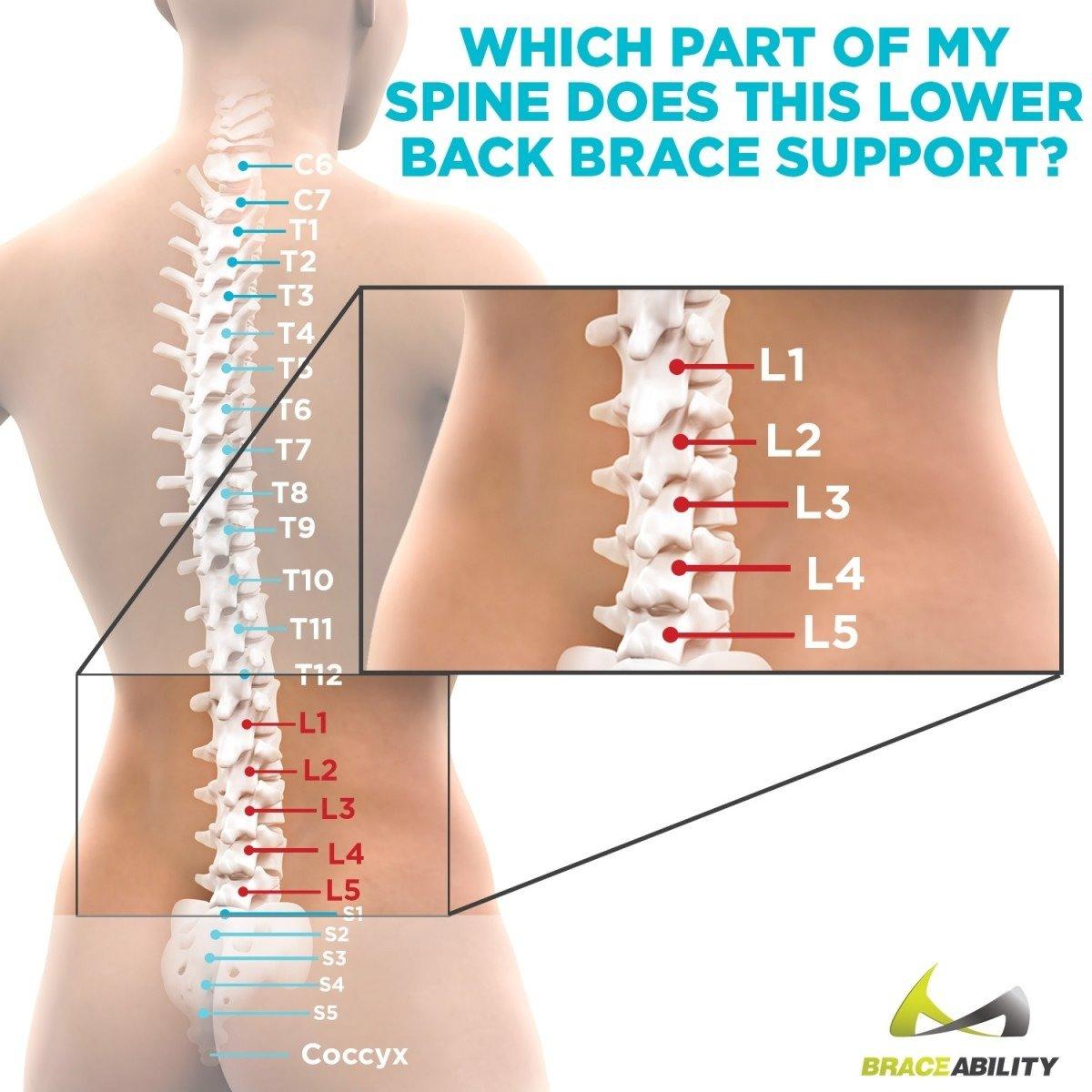 Amazon Braceability Lower Back Spine Pain Brace Adjustable