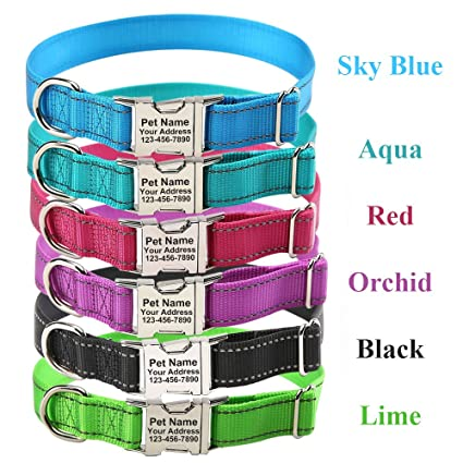Amazon com : ZTZ Personalized Dog Collar, Custom Reflective