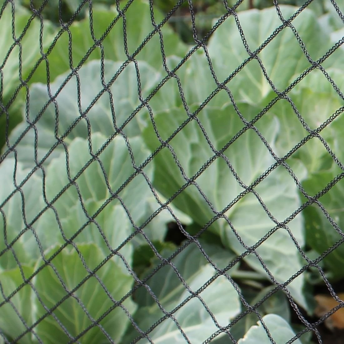 Bird Netting Garden Hoop Tunnel Kits 2.9m Long Complete with Netting