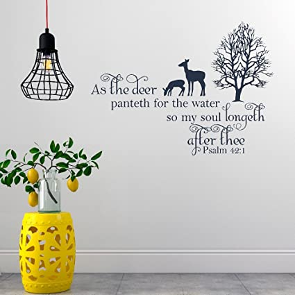 Amazon com: Decals Stickers Wall Words Sayings Removable