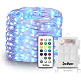Homestarry LED Multi Color Fairy String Lights with Remote 6 AA Battery Powered Firefly 33 ft 100 LED's Twinkle Lights for Bedroom Party Decoration Wedding,13 Colors Option