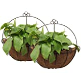 Tosnail PVC Coated Metal Wall Hanging Planter Basket with Coco Liner - Great for Indoor or Outdoor Plants - Pack of 2