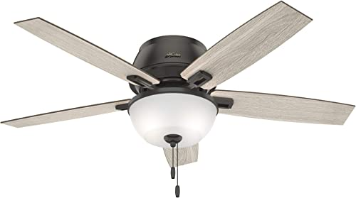 Hunter Fan Company 50274 Hunter Donegan Indoor Low Profile Ceiling Fan