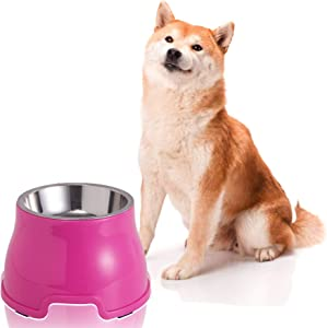 Jemirry Cat Bowl Pet Feeder, Non-Skid & Non-Spill, Easier to Reach Food, Elevated Food Dish for Small Dogs and Cats