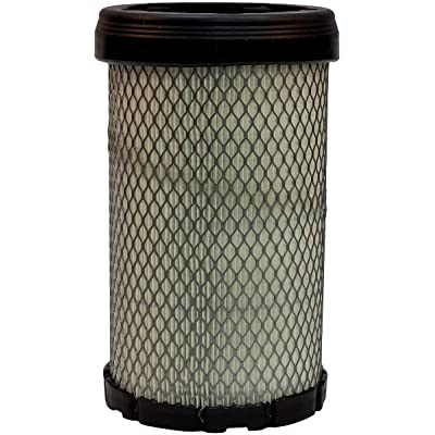 Luber-finer LAF5929 Heavy Duty Air Filter: Automotive