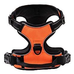 Qklovly Harnais Chien en Nylon réglable et rembourré avec Poignée Harnais de Dressage Réfléchissant Imperméable et Respirant Orange S