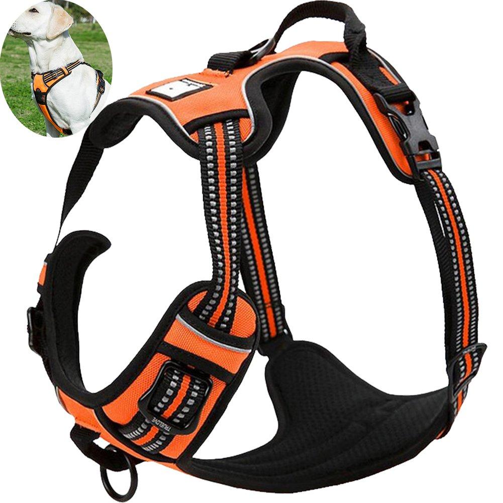 orange XSOLizee Reflective Nylon Nopull Dog Harness and Training Leash Set Padded Durable Adjustable(M, Black Set)