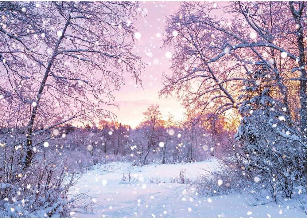 Winter Snowfall Landscape Background-Simulation Hut and Christmas Tree Wonderland Snowflake Bokeh Kids Family Photography Background