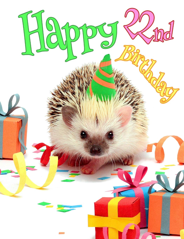 Happy 22nd Birthday Better Than A Card Cute Hedgehog