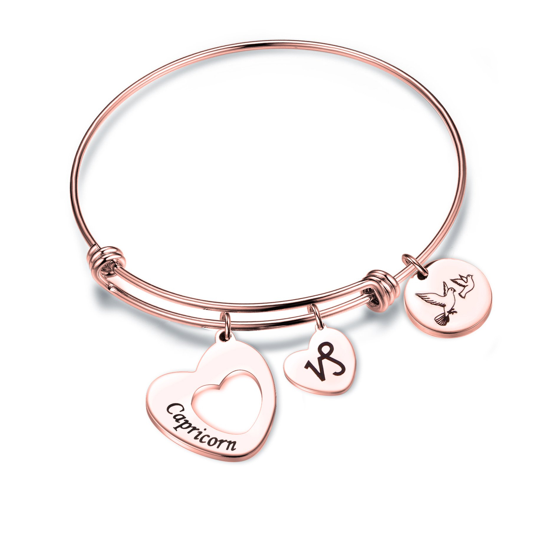 MAOFAED Rose Gold Zodiac Sign Constellation bracelet for Women Girl Gifts (Capricorn-Rose Gold)