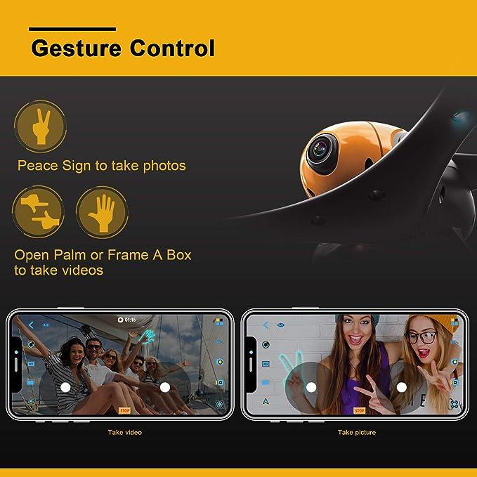 ScharkSpark  product image 3