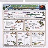 Fishermans - Freshwater Bait Rigging #1