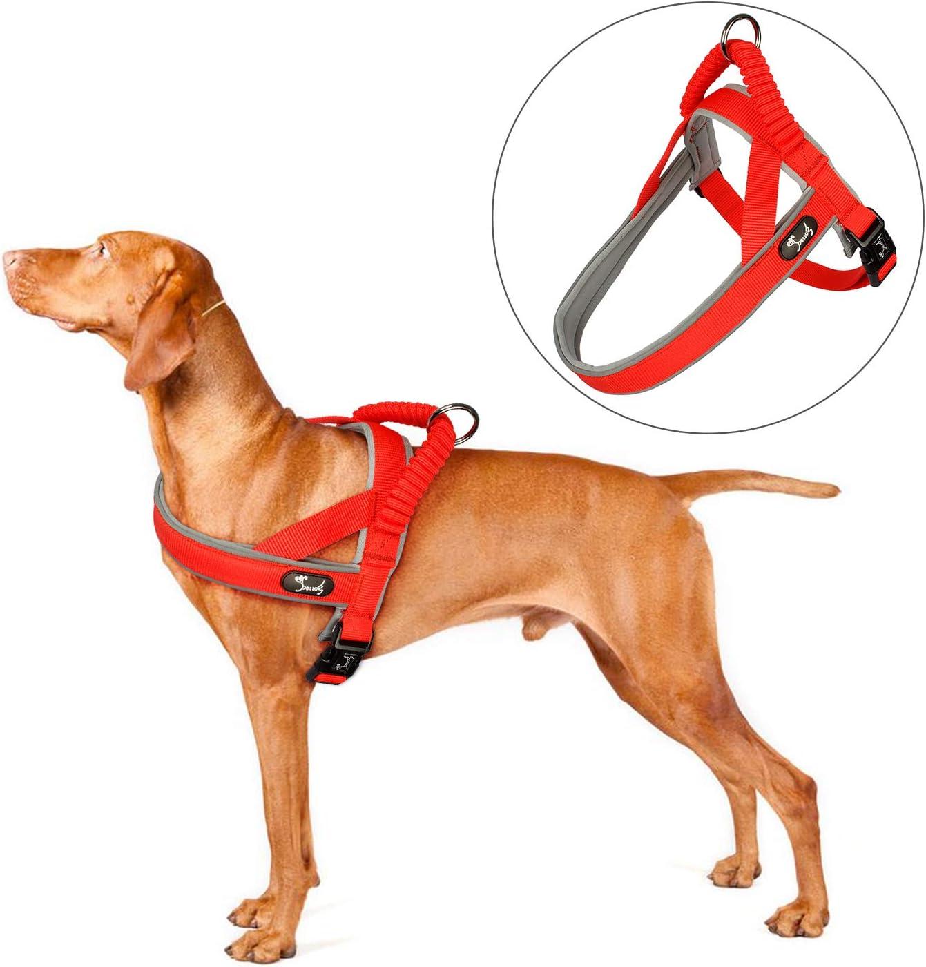 Arnés para Perros Cómodo y Suave Neopreno de Nylon Acolchado Dog ...