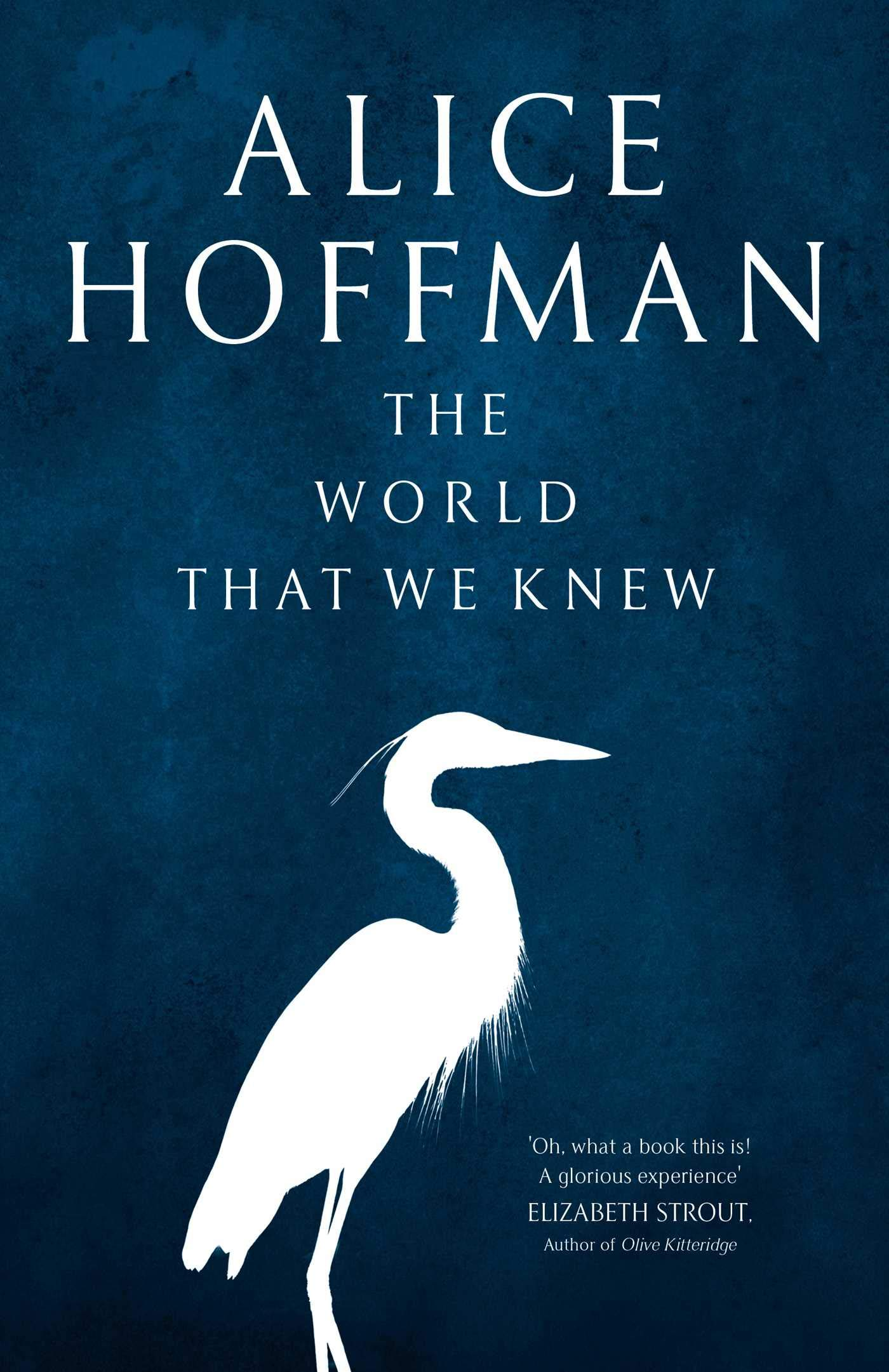 The World That We Knew: Amazon.co.uk: Hoffman, Alice: 9781471185823: Books