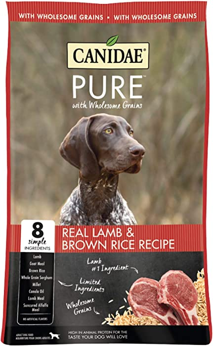 The Best Dog Food Canadae