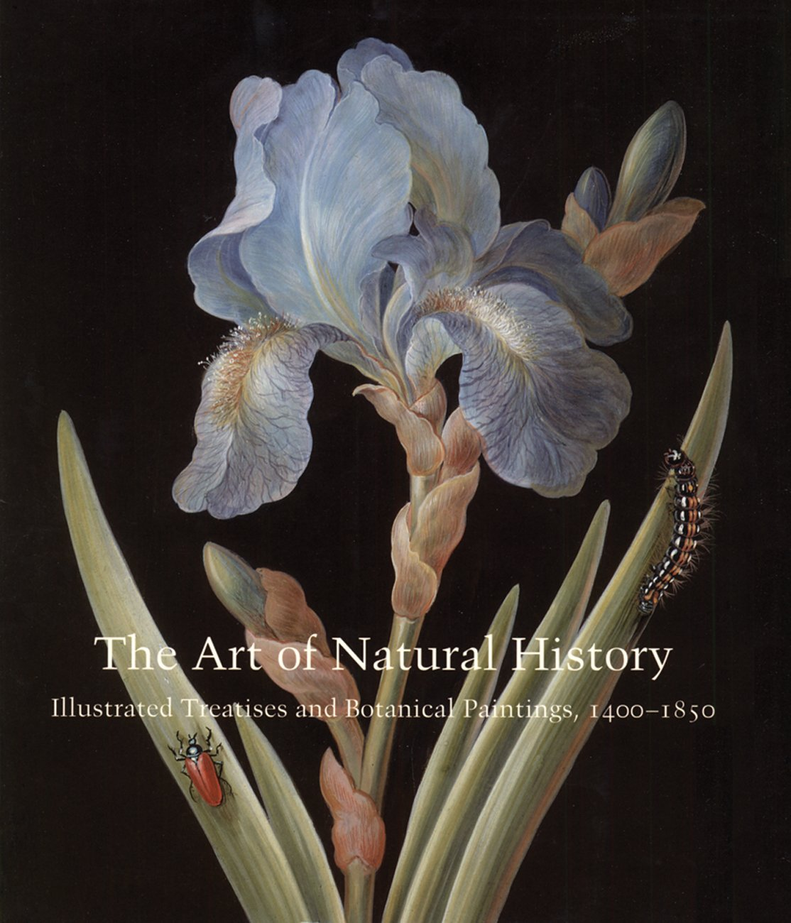 The Art of Natural History: Illustrated Treatises and Botanical Paintings, 1400-1850 (Studies in the History of Art Series) ebook