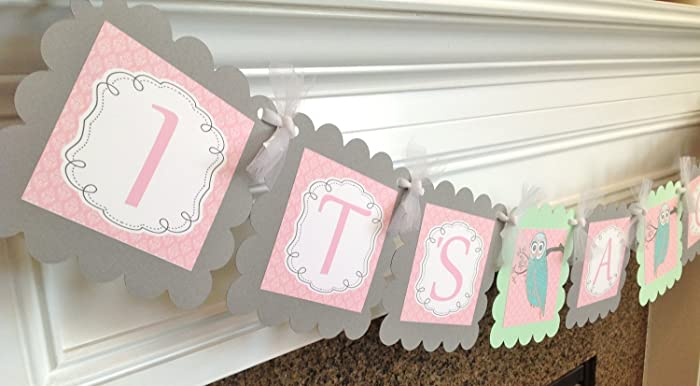 Amazon Whimsical Woodland Owl Its A Girl Baby Shower Banner