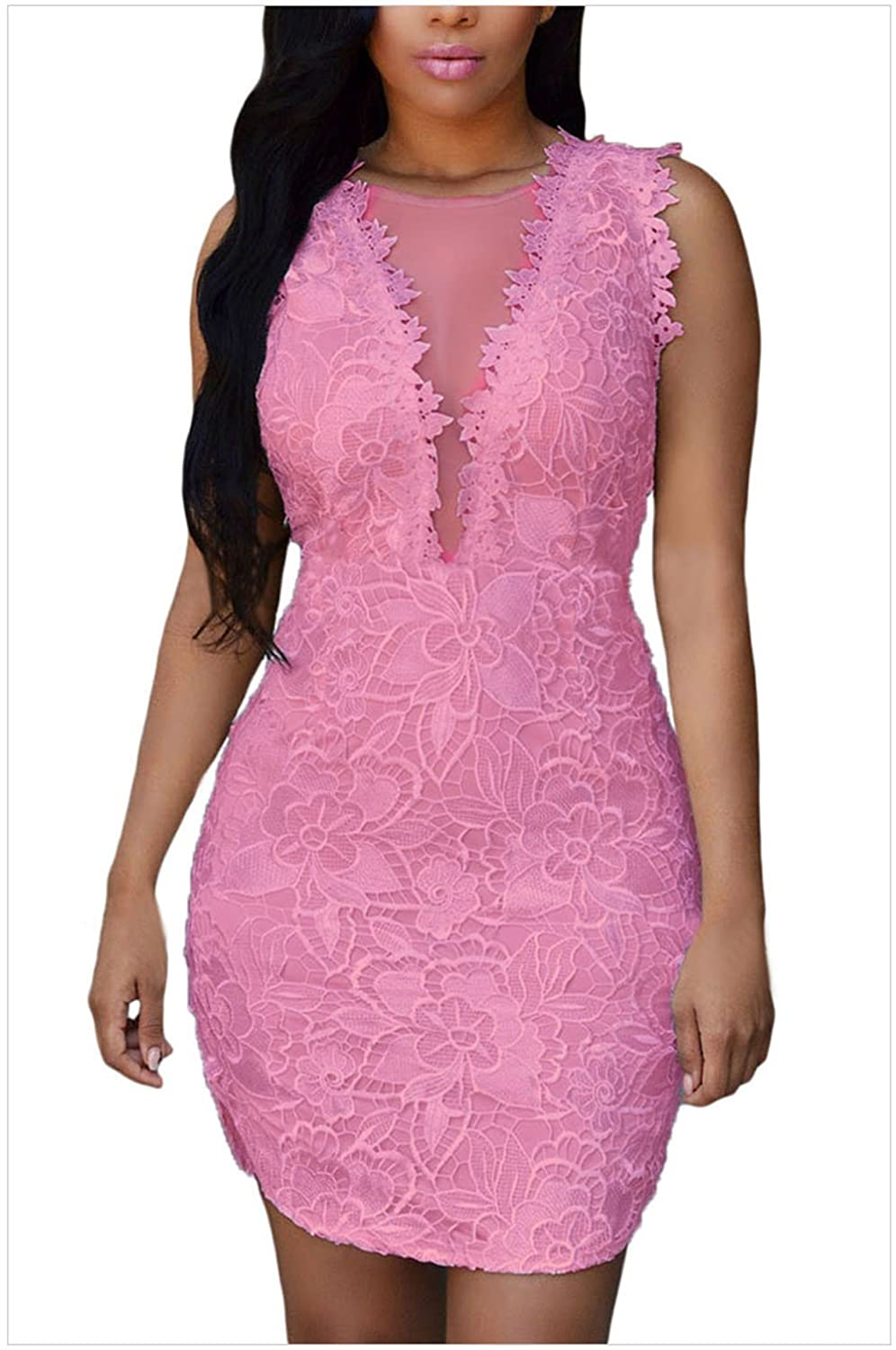 MEINICE Lace Nude Mesh Accent Dress
