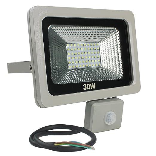 RPGT 30W Blanco Cálido LED Foco Proyector Luz, Foco ...