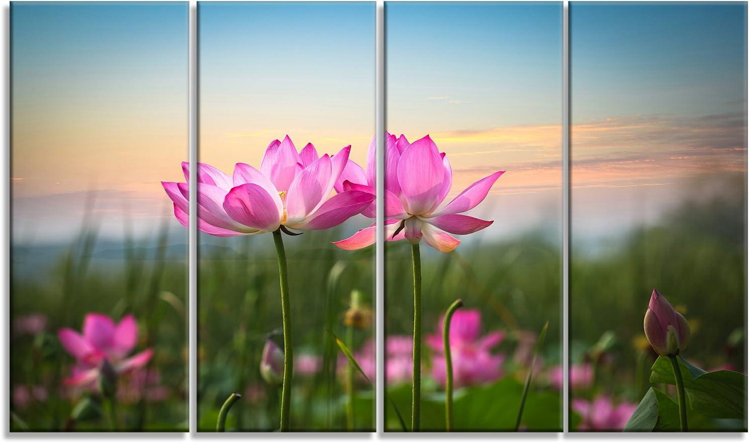 Design Art PT9674-32-16 Blooming Lotus Flowers at Sunset Floral Photo Canvas Print 32x16 Pink Designart