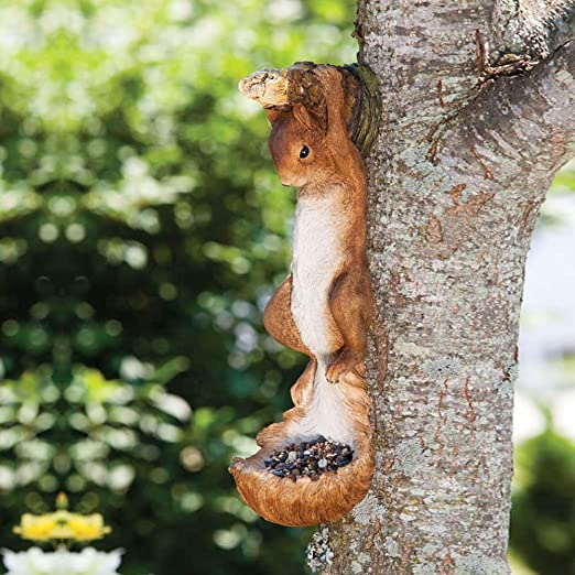 Hanging Squirrel Bird Feeder Tree Decoration: Amazon.es: Jardín