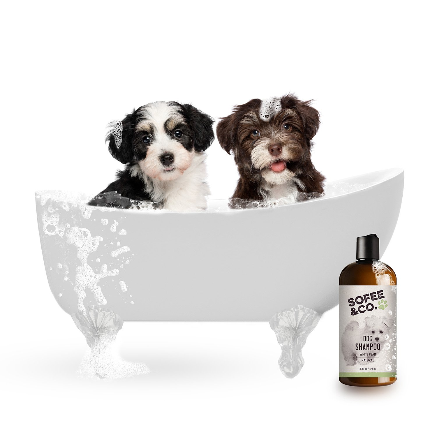 Sofee & Co. Natural Dog/Puppy Shampoo, White Pear - Clean, Moisturize, Deodorize, Detangle, Calm, Soothe, Soften, Normal, Dry, Itchy, Allergy, Sensitive Skin. Prevent Mattes. 16 oz by Sofee & Co. (Image #4)