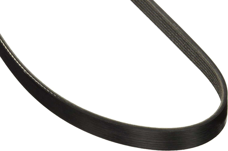 Motorcraft JK5366 V-Ribbed Belt