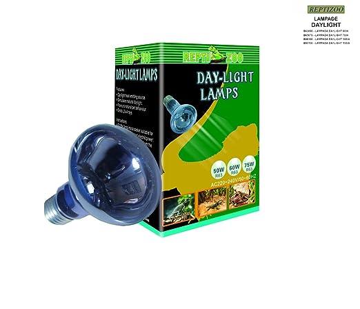 5 opinioni per Reptizoo Lampada Daylight- (B80100) 100W- Spot a Basso Consumo Energetico