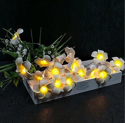 20 LEDs String Light Hawaiian White Plumeria Flower Fairy Lights for Home,  Chrismas, Party - Amazon.com: 20 LEDs String Light Hawaiian White Plumeria Flower
