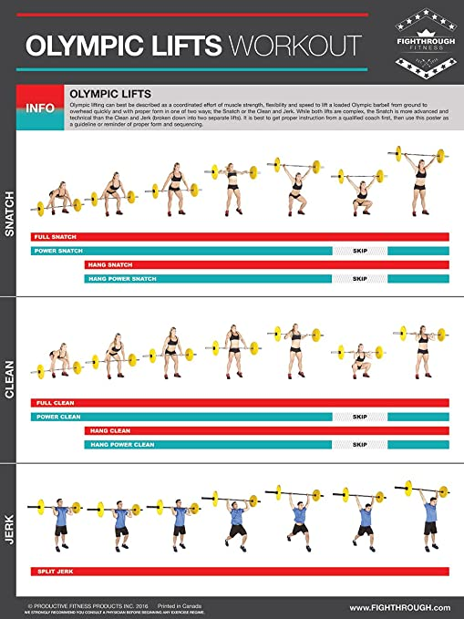 Olympic Lifts - Laminated Poster Lifting Poster / Chart For - Strength &  Cardio Training - Core - Chest - Legs - Shoulders - Back - Build Muscle,  Tone