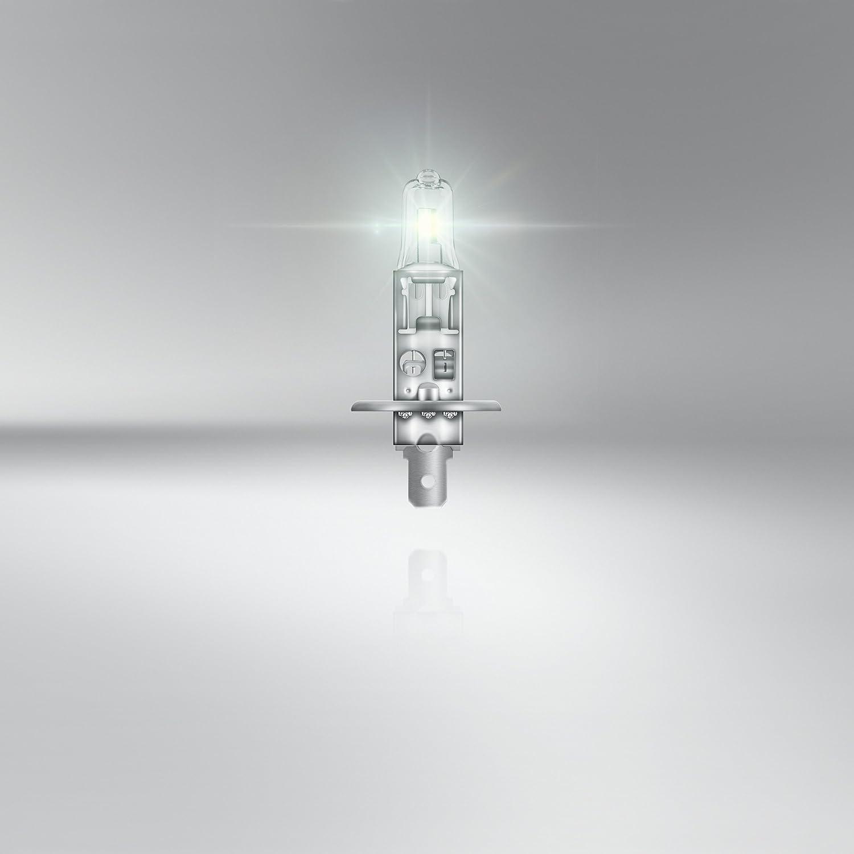 feu antibrouillard arri/ère 10 pi/èces feu stop OSRAM TRUCKSTAR PRO PY21W Lampe de signalisation halog/ène 24V v/éhicule utilitaire 7510TSP bo/îte pliante
