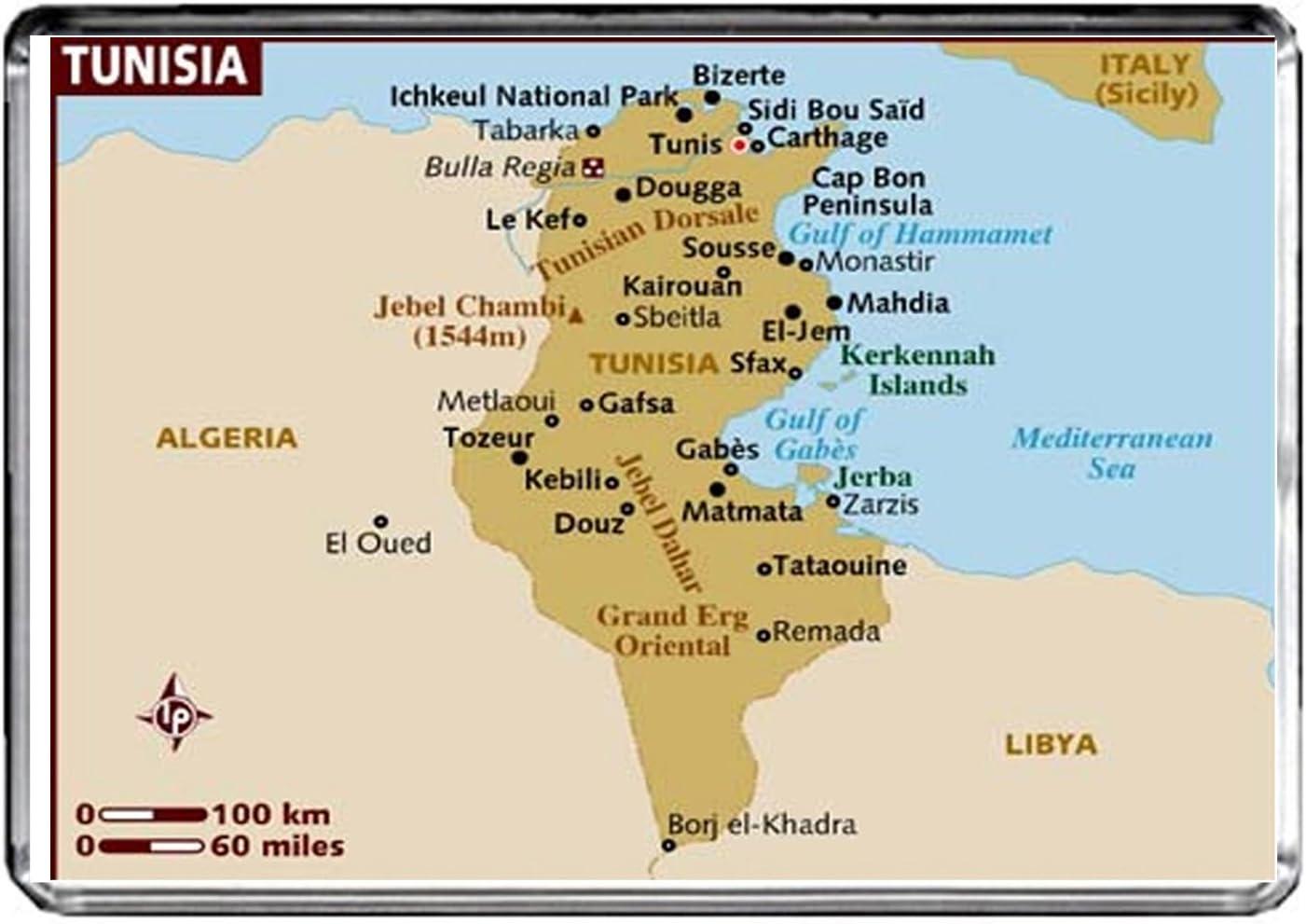 CFL M026 MAP OF BOLIVIA MAGNETICA CALAMITA FRIGO BOLIVIA TRAVEL FRIDGE MAGNET
