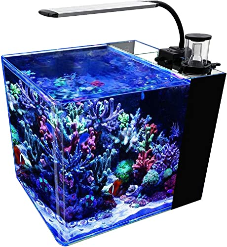 GankPike-8-Gallon-Saltwater-Aquarium-Marine-Fish-Tank