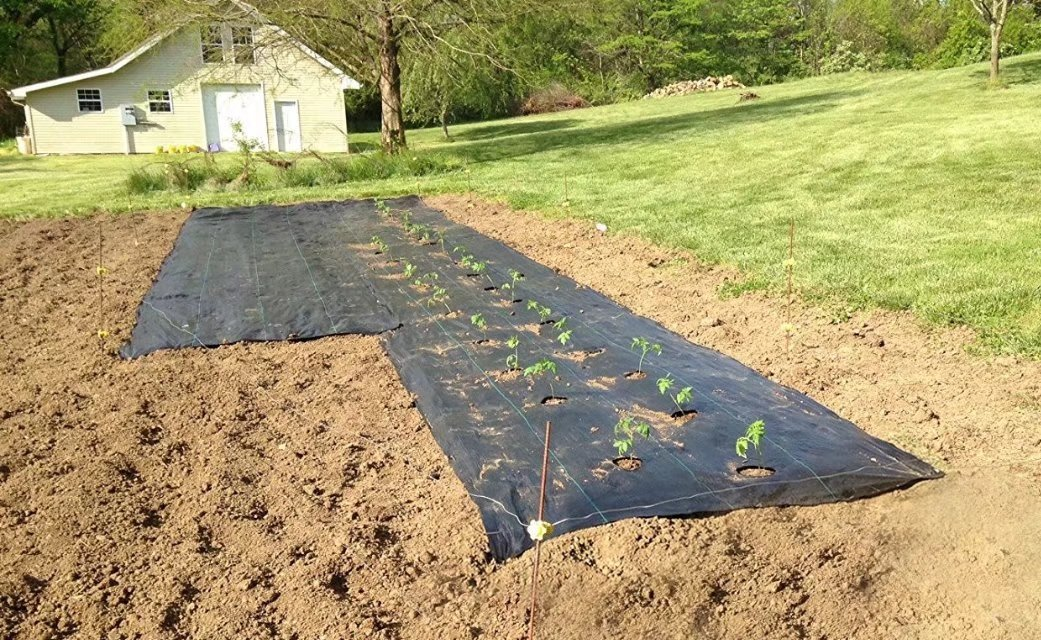 Agfabric Easy-Plant Weed Block for Raised Bed Outdoor Garden Weed Rugs Garden mat 3.0oz, 3'x12',with Planting Hole Dia 4''