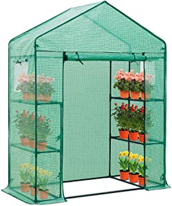 EAGLE PEAK 61'' x 28'' x 79'' Walk-in Greenhouse, 2 Tier 4 Shelves Portable Plant Gardening Greenhouse, Front Roll-Up Zipper Entry Door and 2 Roll-Up Side Windows, Green